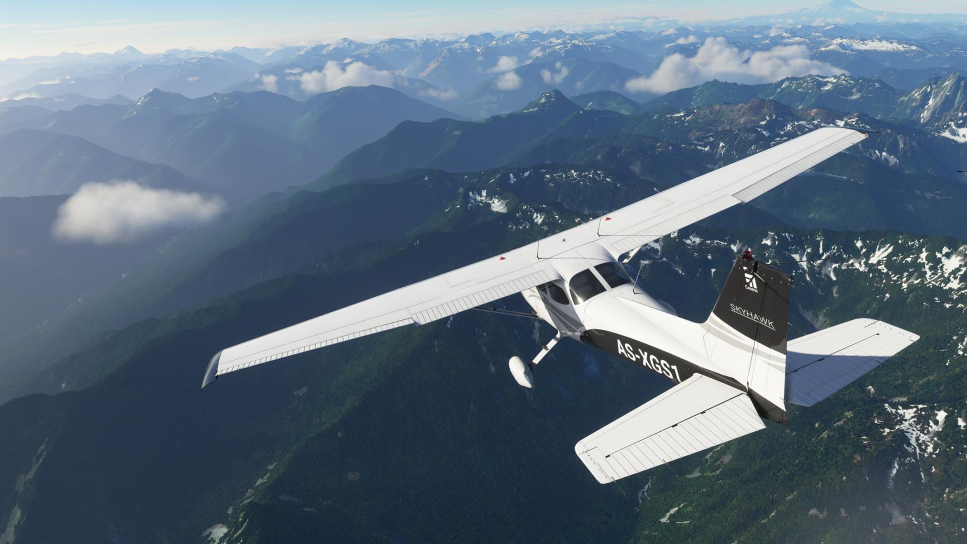 FlightSim Hero X019 image