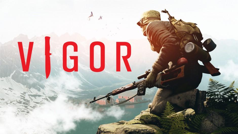 Vigor Hero Image